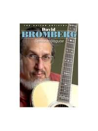 David Bromberg: The Guitar Artistry Of David Bromberg