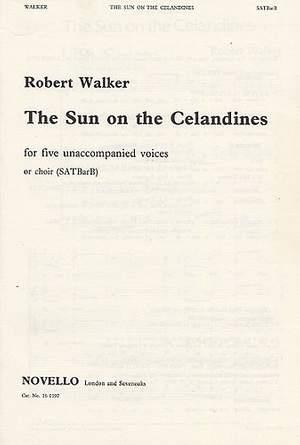 Robert Walker: Sun On The Celandines