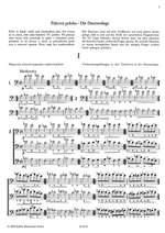 Czerny, Carl: Technical Studies Double Bass (Czech) Product Image
