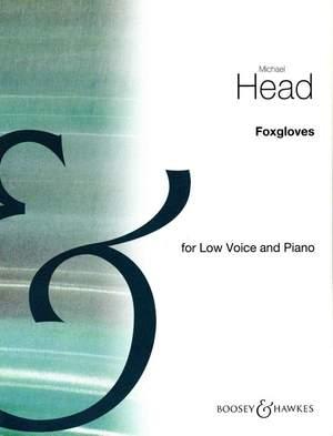 Head, M: Foxgloves In A Flat