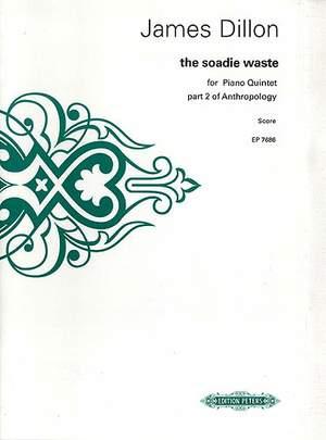 Dillon, J: the Soadie Waste