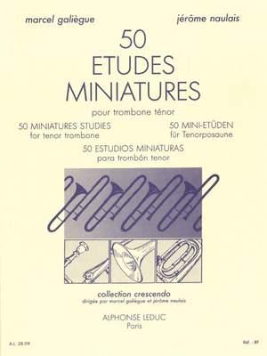 Jérôme Naulais: 50 études miniature