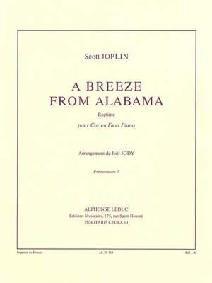 Scott Joplin: Scott Joplin: a Breeze from Alabama