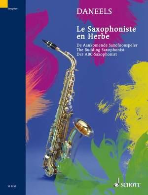 Daneels, F: The Budding Saxophonist