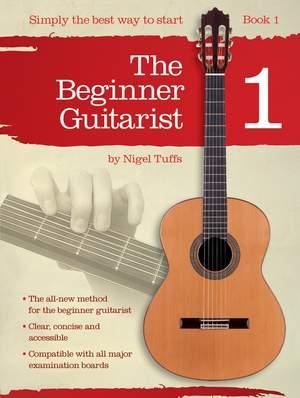 Beginner Guitarist