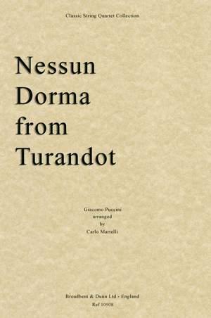 Puccini, Giacomo: Nessun Dorma from Turandot