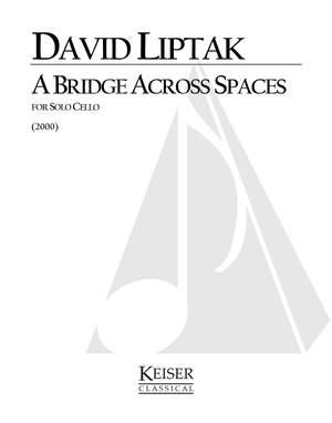 David Liptak: A Bridge Across Spaces