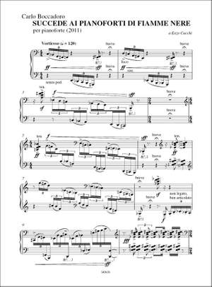 Carlo Boccadoro: Succede Ai Pianoforti Di Fiamme Nere (2011)