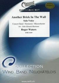 Roger Waters: Another Brick In The Wall (Solo Voice)
