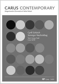 Schürch, Cyrill: Sonniger Nachmittag