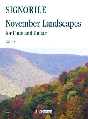 Signorile, G: November Landscapes Product Image