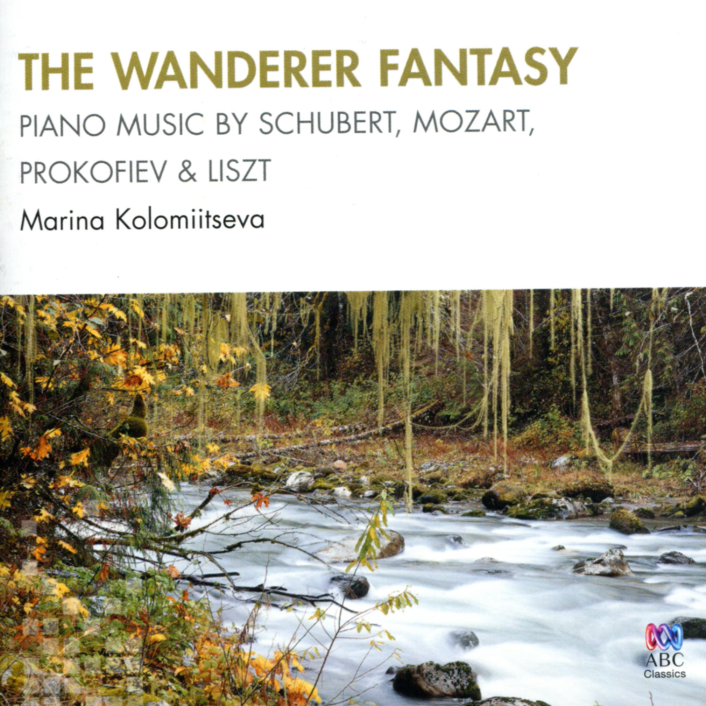 The Wanderer Fantasy