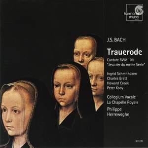 Bach, J S: Cantata BWV198 'Laß, Fürstin, laß noch einen Strahl' (Trauerode), etc. Product Image
