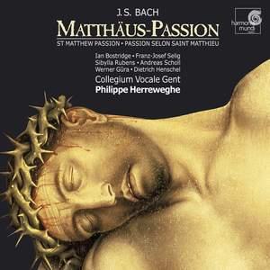 Bach, J S: St Matthew Passion, BWV244 Product Image