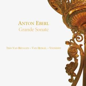 Eberl: Grand Trio, Clarinet Sonata & Quintetto Product Image