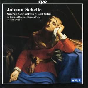 Schelle - Sacred Concertos & Cantatas