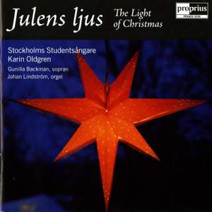 Julens Ljus - The Light of Christmas