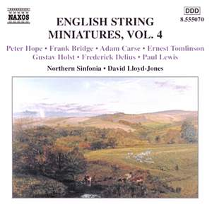 English String Miniatures, Vol. 4 Product Image