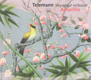 Telemann - Voyageur Virtuose Product Image