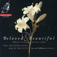 Beloved & Beautiful