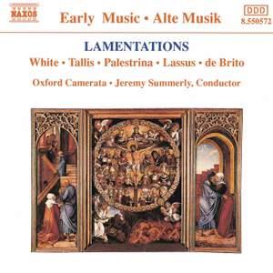 Lamentations Product Image