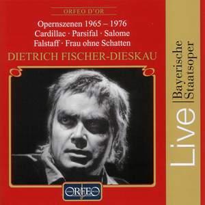 Opernszenen 1965-1976