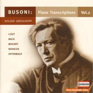 Busoni: Piano Transcriptions Vol. 2