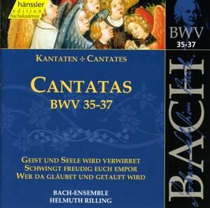 Bach - Cantatas Vol. 12