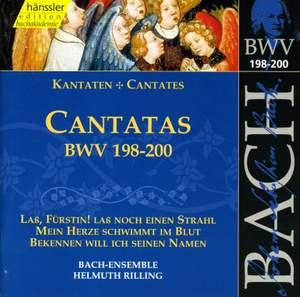 Bach - Cantatas Vol. 60 Product Image