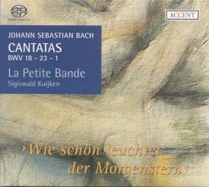 Bach - Cantatas for the Liturgical Year Volume 6