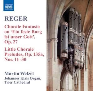 Reger - Organ Works Volume 8