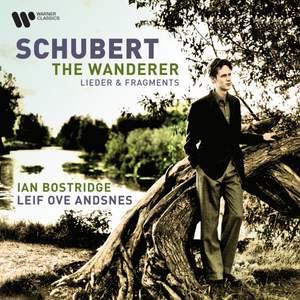 Schubert - The Wanderer Product Image