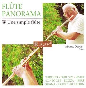 Various Composers: Flute Panorama - Une Simple Flute