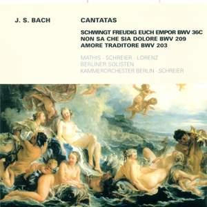 Bach, J S: Cantata BWV36c 'Schwingt freudig euch empor', etc.