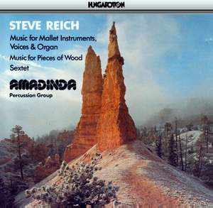 Steve Reich Product Image