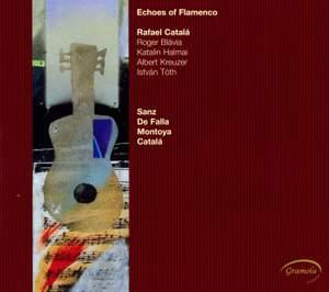 Echos of Flamenco