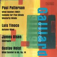 Patterson, Tinoco, Olsen & Holst: Works for wind ensemble