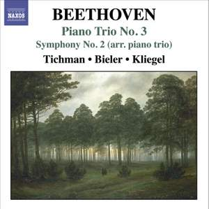 Beethoven - Piano Trios Volume 3
