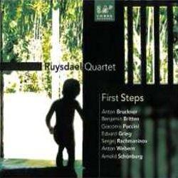 Ruysdael Quartet: First Steps