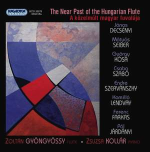 The Near Past of the Hungarian Flute Product Image
