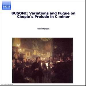 Busoni - Piano Music Volume 2