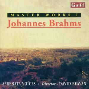 Brahms: Masterworks Vol. 1