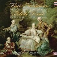 Flute Fantasies and Flute Trios