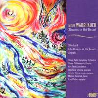 Meira Warshauer: Streams in the Desert