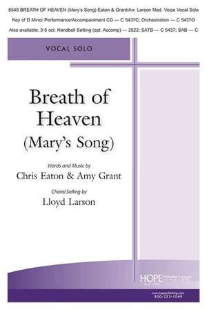 Chris Eaton_Amy Grant: Breath of Heaven