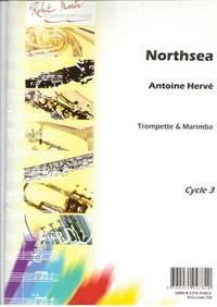 Antoine Herve: Northsea