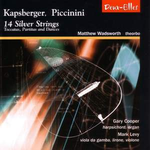 14 Silver Strings Product Image
