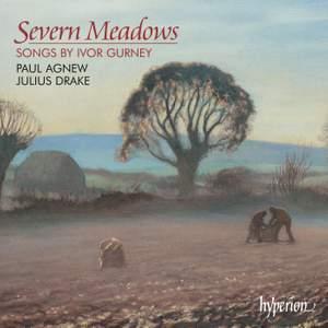 Severn Meadows