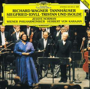 Wagner: Siegfried-Idyll and other orchestral works Product Image