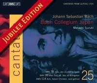 Bach - Cantatas Volume 25